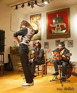 """""""El Bule"""" en un tablao flamenco"""