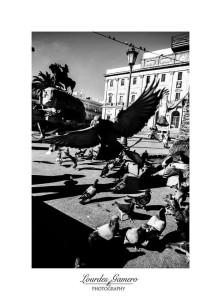 Una de las fotografías expuestas, de Lourdes Gamero
