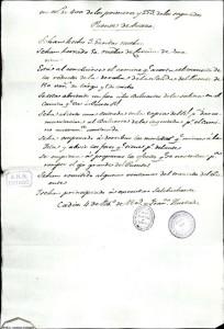 Documento VII.